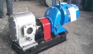 Агрегат насосный ДС – 215 с мотор редуктором.